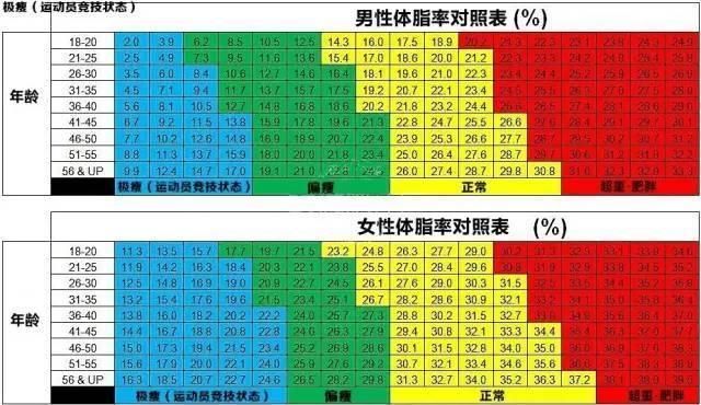 測測你的體脂率!附男女標準體脂率對照表~ - 壹讀