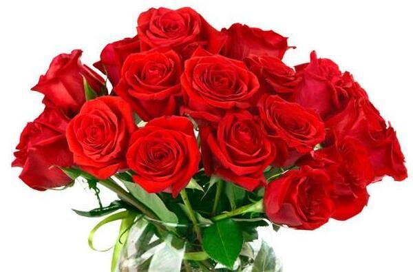 21朵玫瑰花花語是什麼 送21朵玫瑰代表什麼意思 - 壹讀