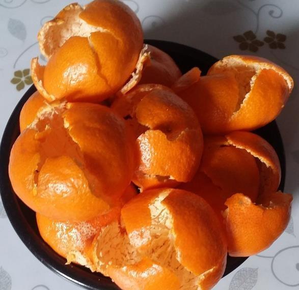 冬養長壽花。開花少。來點「橘子皮」。一周冒花苞。30天開爆盆 - 壹讀