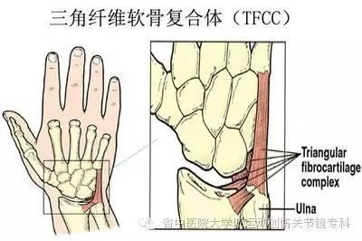 什麼是腕三角軟骨損傷? - 壹讀