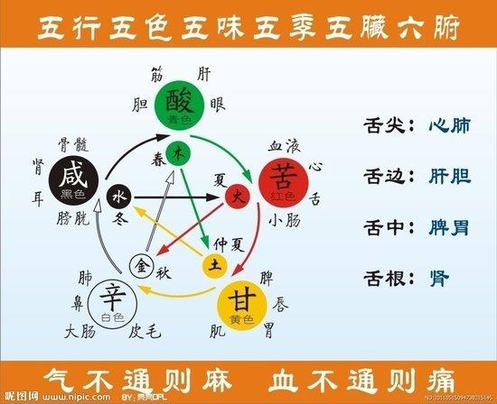 [轉載]五行、五臟、五味、五色、五官、五情、五季的關係 - 壹讀