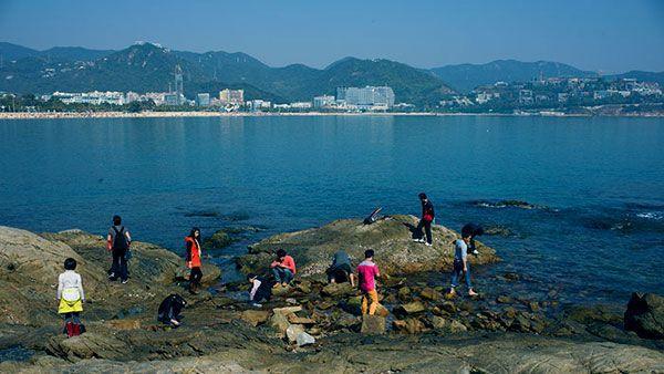 深圳鹽田海濱棧道有什麼好玩的?漫步在世界最長的濱海棧道 - 壹讀