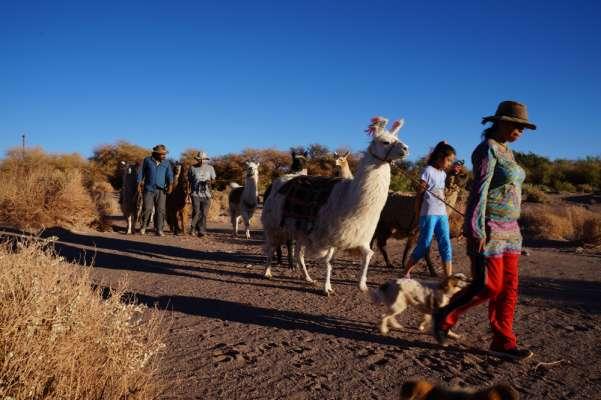 Itinerary of Ancient Caravan in San Pedro de Atacama