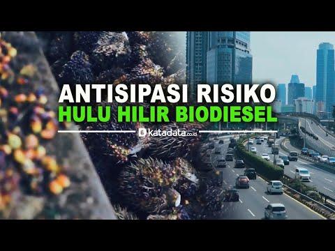 Antisipasi Risiko Hulu Hilir Biodiesel   Katadata Indonesia
