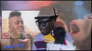 NIOKOLO revient sur les ROIS DES ARENES - MANGA , TYSON , YEKINI , BALLA , BOMBARDIER