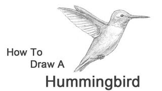 hummingbird diagram of color 3000gt ac wiring how to draw a youtube