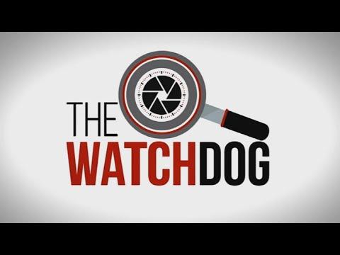 The Watchdog   Latest crime statistics: 20 August 2021