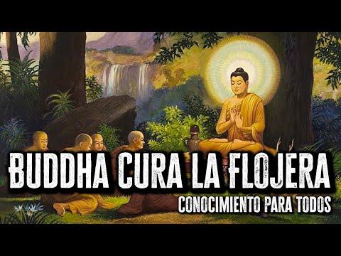 Reflexiones de Vida || Cuando Buddha Curo al Hombre Flojo || La Historia cuando Buda cura la Flojera