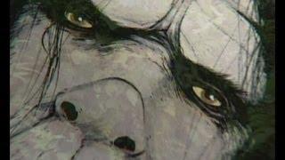 Minnesota Iceman, Psychic Pets, Golden Frogs