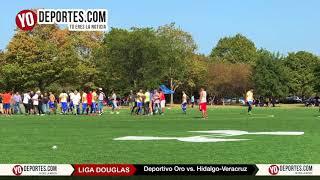 Termina en riña semifinal Deportivo Oro vs Hidalgo Veracruz en la Liga Douglas