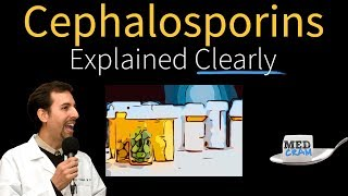 Cephalosporins Explained Clearly