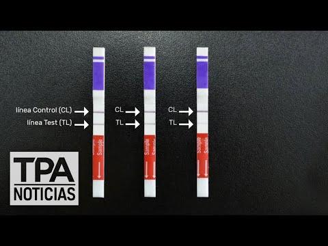 Presentan un nuevo método parea detectar el dengue | #TPANoticias