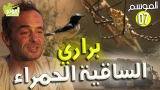 AmouddouTV 109 la faune de la seguia el hamra (1re partie) أمودو /  براري الساقية الحمراء
