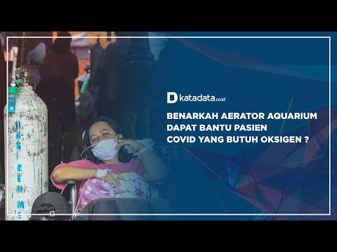 Benarkah Aerator Aquarium Dapat Bantu Pasien Covid yang Butuh Oksigen ?| Katadata Indonesia
