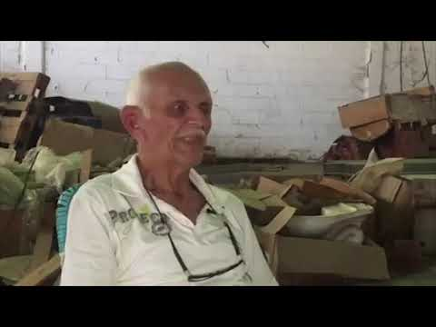 Especial Guárico - 17 años de vida dentro de un galpón - VPItv