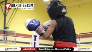 Adan Rojas vs. Chrystan Patino Joliet Luna Boxing 2015