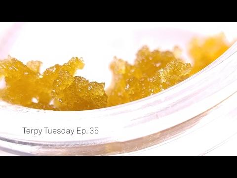 Terpy Tuesday Ep. 35: Loudpack Strawberry Banana Haze