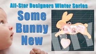 All-Star Designers Winter Series: Some Bunny Special Magnetic Baby Announcement & Decorative Frame