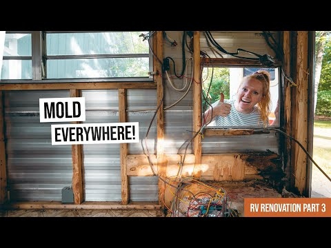 Vintage RV Renovation PART 3 - MORE MOLD! 🦠😭 + Completely Gutting the Living Room!