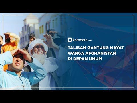 Taliban Gantung Mayat Warga Afghanistan di Depan Umum   Katadata Indonesia