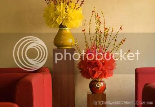 Caf1 Hoa Nắng