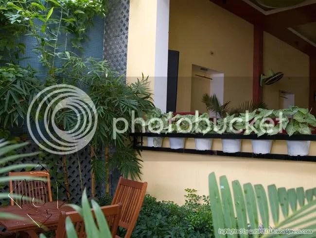 Café Hoa Nắng