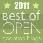 Best of Open Adoption Blogs 2011