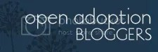 Open Adoption Blogs