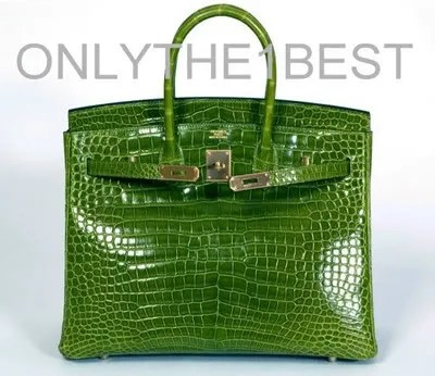 Hermes Crocodile Birkin Bag 35cm Pelouse color