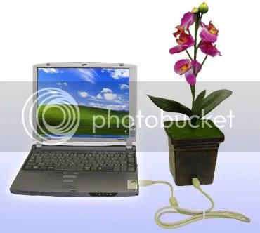 Think green, think flower pot usb!
