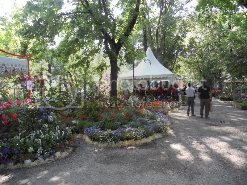 Orticolareportage  Forum Giardinaggio