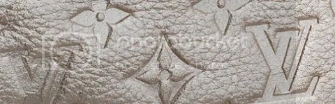 Louis Vuitton Monogram Shimmer