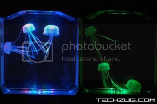 The Toy Jellyfish Aquarium for You