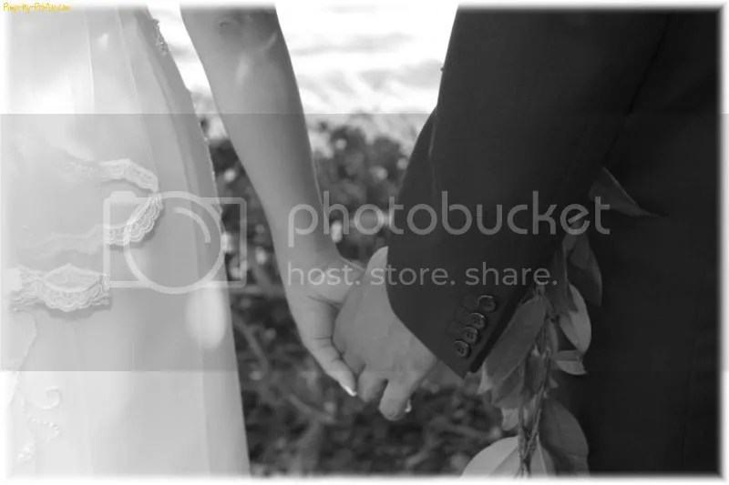wedding background Pictures, Images and Photos