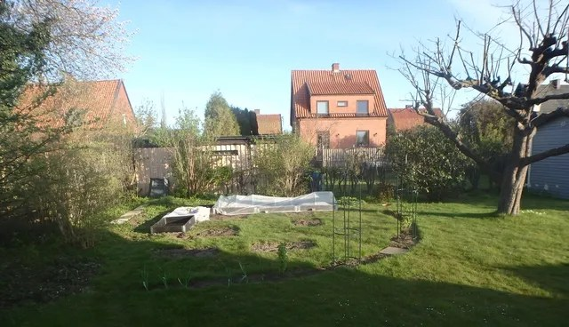 photo 2016-05-06 Potager_zpselwszgvl.jpg