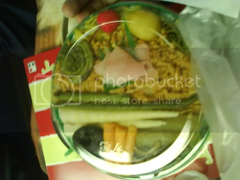 All veggie bento lunch on Shinkansen. The horse chestnut and inari beancurd pieces were tasty~
