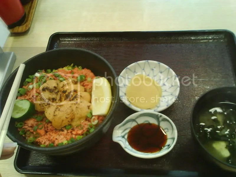 Sea Urchin and toro donburi ~