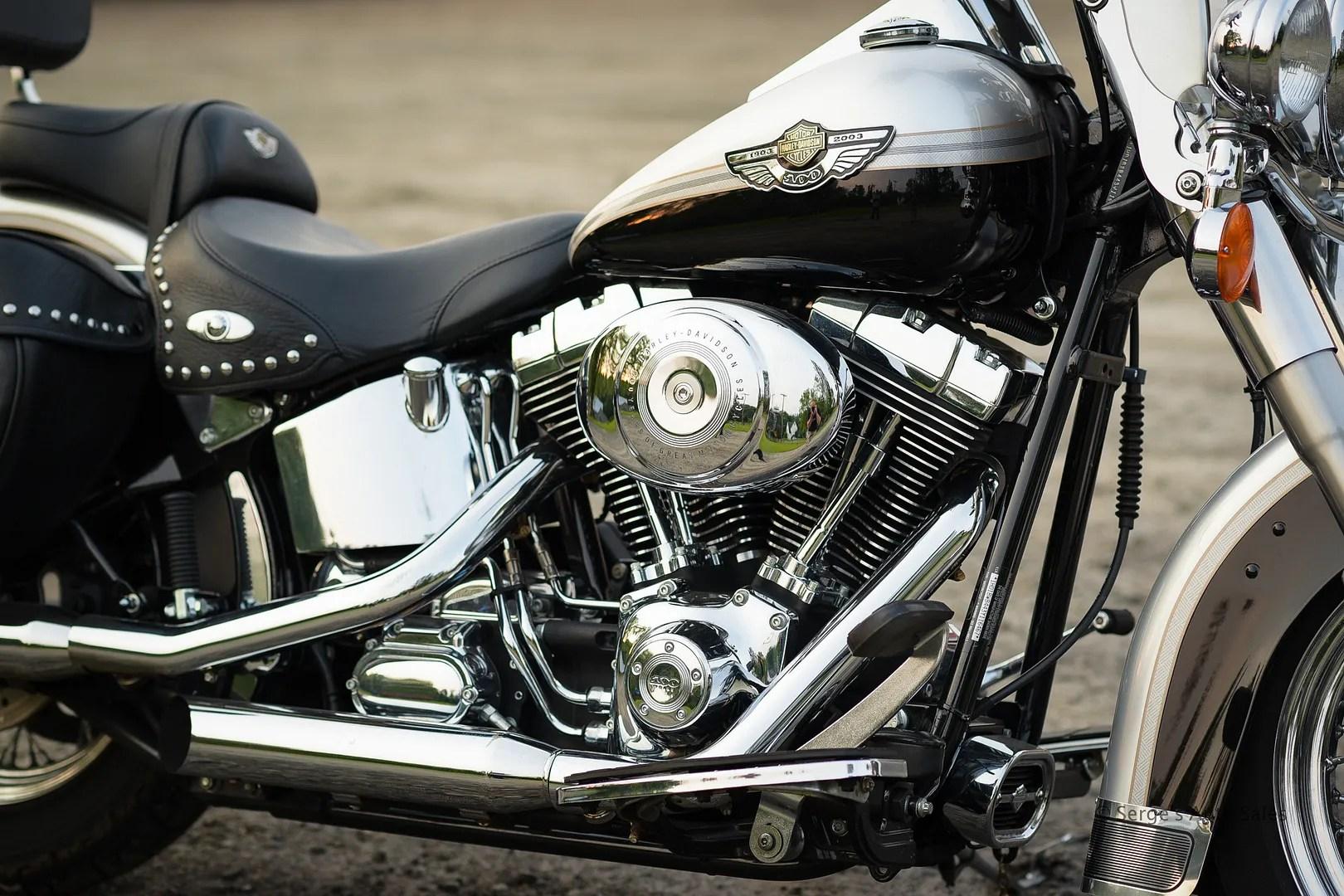 photo Harley-14_zpsndp71kbj.jpg