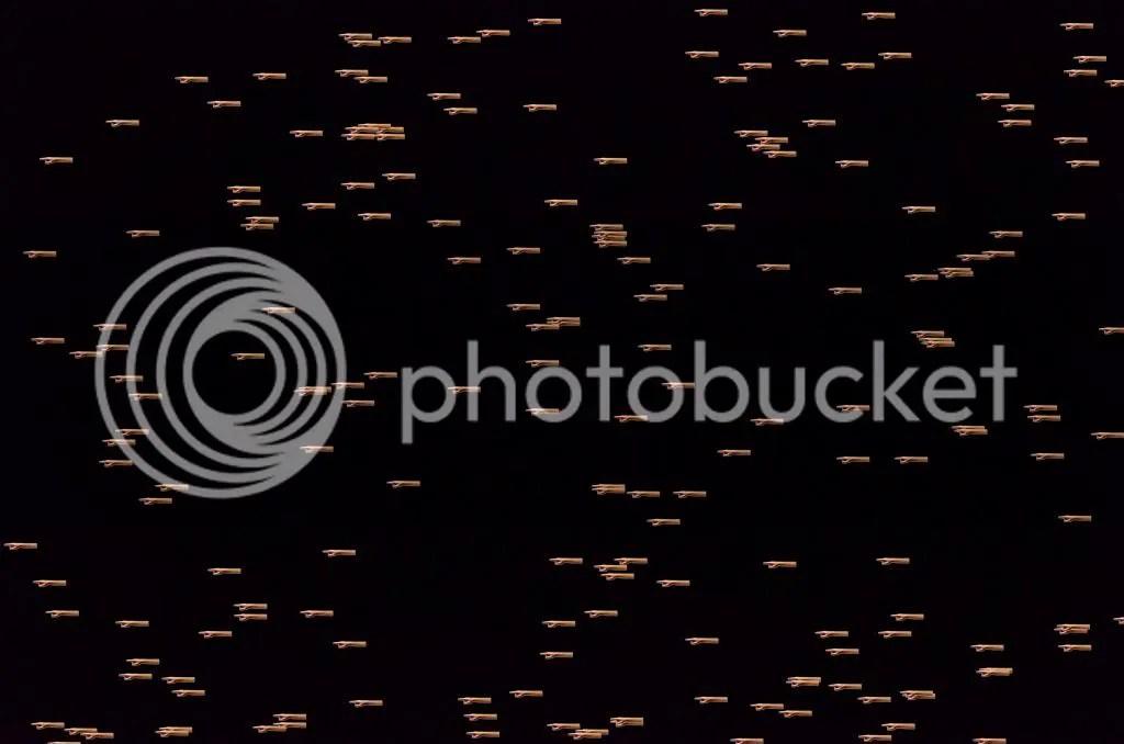 photo Before_zpsc39037c6.jpg