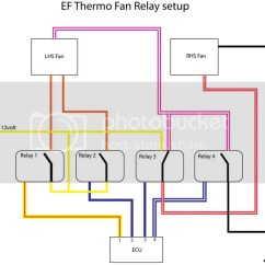 Tridon Thermo Fan Switch Wiring Diagram 3 Phase Star Delta Ford Au Online Schematic