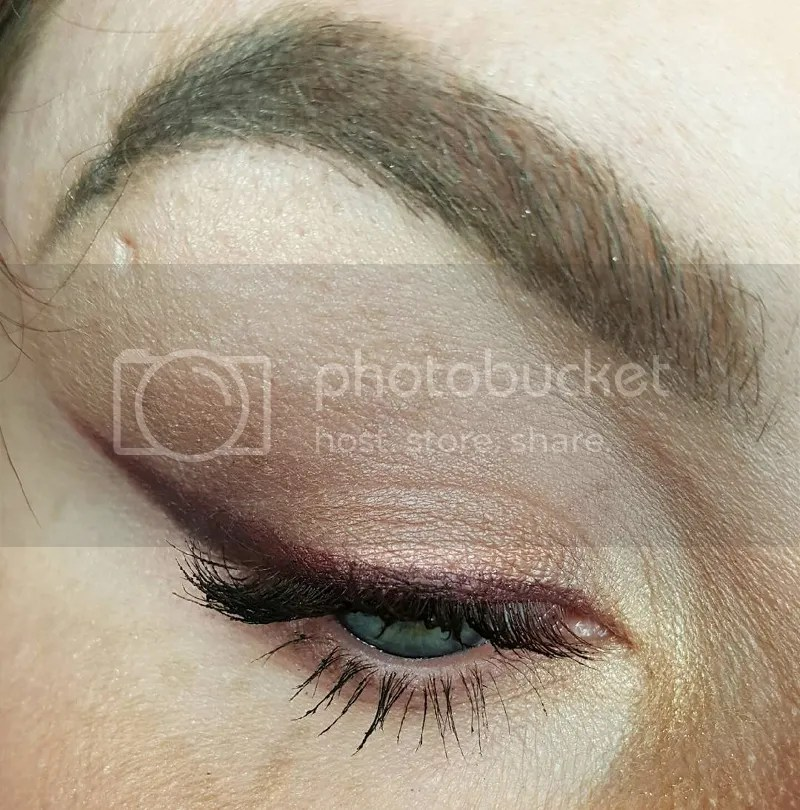 photo Dec. in Makeup - Bee Beauty 22_zpssye0emzo.jpg