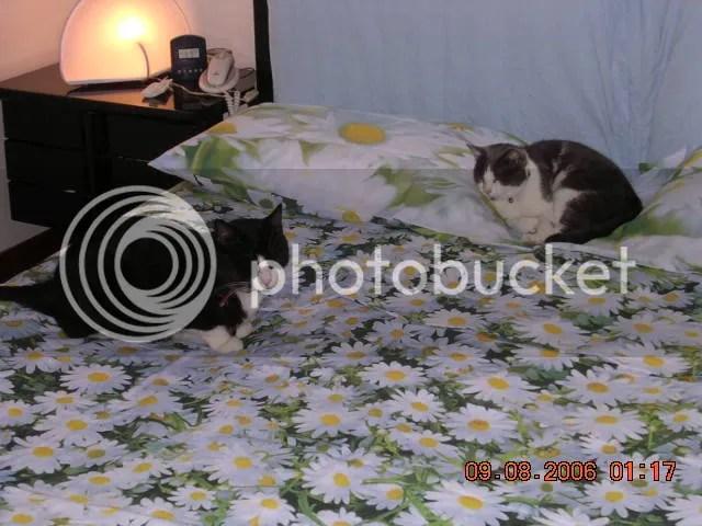 """Alex e Pepper su un """"letto"""" di fiori!"""