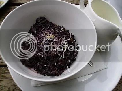 satis - wild rice porridge