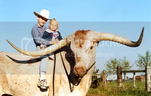 Darol Dickinsons grandkids, atop one of his Texas Longhorn cattle.