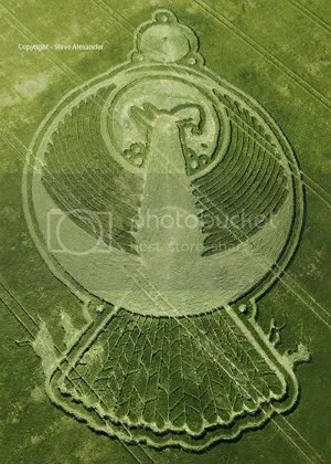 Sidebar: Are the Arcturians trying to tell us theres still hope with this Phoenix image crop circle, one of the latest designs. Photo Steve Alexander.