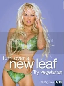 Vegetarian diet? -- not so smart after all. Picture from PETA. And no, that doesnt stand for People Eating Tasty Animals.