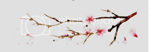 photo spring-cherry2_zpsvn9uotxk.png