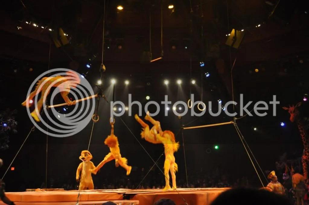"""""""Monkey"""" acrobats"""