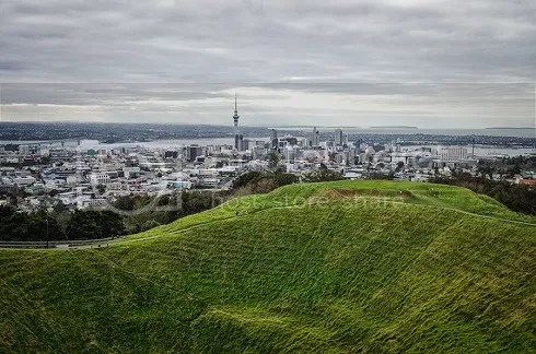NZ photo _DSC0135_zps7b6ac3e9.jpg
