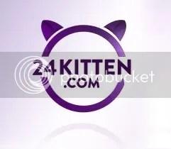 24Kittens